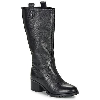 Παπούτσια Γυναίκα Μπότες για την πόλη André ENORA Black