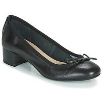 Παπούτσια Γυναίκα Μπαλαρίνες André POEME Black