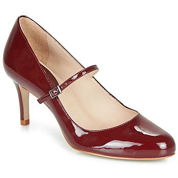 Παπούτσια Γυναίκα Γόβες André LUCIOLLE Bordeaux