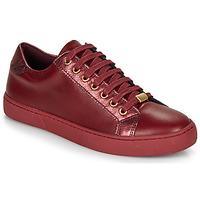 Παπούτσια Γυναίκα Χαμηλά Sneakers André BERKELEY Bordeaux