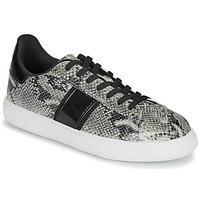 Παπούτσια Γυναίκα Χαμηλά Sneakers André FRISBEE Grey