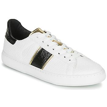 Xαμηλά Sneakers André FRISBEE ΣΤΕΛΕΧΟΣ: Συνθετικό & ΕΠΕΝΔΥΣΗ: Ύφασμα & ΕΣ. ΣΟΛΑ: Δέρμα & ΕΞ. ΣΟΛΑ: Καουτσούκ
