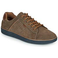 Παπούτσια Άνδρας Χαμηλά Sneakers André ELTON Kaki