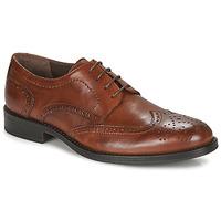 Παπούτσια Άνδρας Derby André NORY Brown