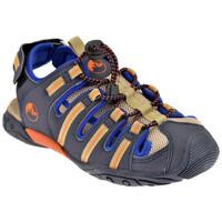 Παπούτσια Παιδί Σανδάλια / Πέδιλα Lumberjack  Μπλέ