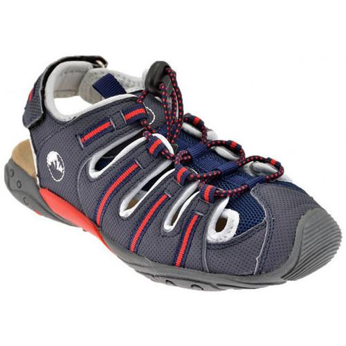 Παπούτσια Παιδί Σανδάλια / Πέδιλα Lumberjack  Grey