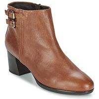 Παπούτσια Γυναίκα Μποτίνια Geox ERIKAH B Brown
