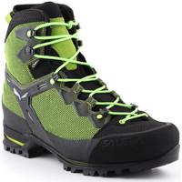 Παπούτσια Άνδρας Πεζοπορίας Salewa Trekking shoes  Ms Raven 3 GTX 361343-0456 green