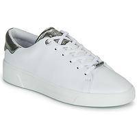 Παπούτσια Γυναίκα Χαμηλά Sneakers Ted Baker ZENIS Άσπρο