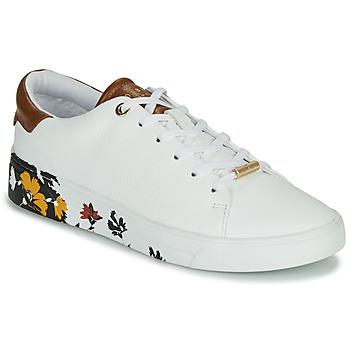 Παπούτσια Γυναίκα Χαμηλά Sneakers Ted Baker WENIL Ασπρό