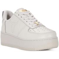 Παπούτσια Γυναίκα Χαμηλά Sneakers Windsor Smith RACERR WHITE Bianco