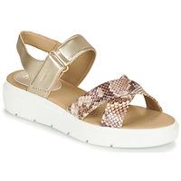 Παπούτσια Γυναίκα Χαμηλά Sneakers Geox D TAMAS Gold / Taupe