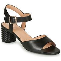 Παπούτσια Γυναίκα Σανδάλια / Πέδιλα Geox D ORTENSIA MID SANDA Black