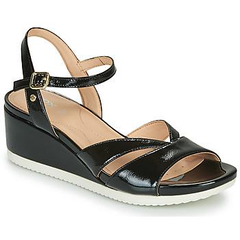 Παπούτσια Γυναίκα Σανδάλια / Πέδιλα Geox D ISCHIA Black