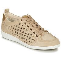 Παπούτσια Γυναίκα Χαμηλά Sneakers Geox D MYRIA Beige