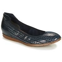 Παπούτσια Γυναίκα Μπαλαρίνες Tamaris JOYA Marine / Silver