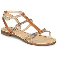 Παπούτσια Γυναίκα Σανδάλια / Πέδιλα JB Martin 1GRIOTTES Brown / Gold