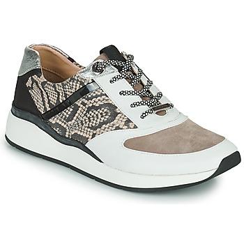 Xαμηλά Sneakers JB Martin 1KALIO ΣΤΕΛΕΧΟΣ: Δέρμα & ΕΠΕΝΔΥΣΗ: Δέρμα & ΕΣ. ΣΟΛΑ: Δέρμα & ΕΞ. ΣΟΛΑ: Καουτσούκ