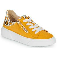 Παπούτσια Γυναίκα Χαμηλά Sneakers Gabor KURUKU Yellow