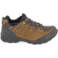 Παπούτσια Άνδρας Πεζοπορίας Aigle Vedur Low MTD Marron Brown
