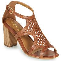Παπούτσια Γυναίκα Σανδάλια / Πέδιλα Ravel COREEN Camel