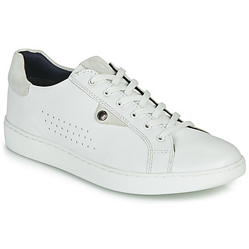 Παπούτσια Άνδρας Χαμηλά Sneakers Base London BUZZ Άσπρο