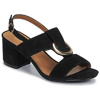 Παπούτσια Γυναίκα Σανδάλια / Πέδιλα Moony Mood MANY Black