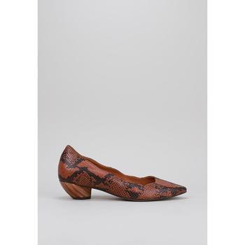 Παπούτσια Γυναίκα Μπαλαρίνες Roberto Torretta  Brown