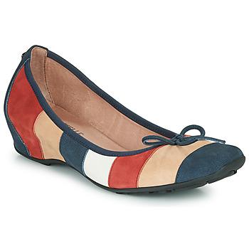 Παπούτσια Γυναίκα Μπαλαρίνες Mam'Zelle FLUTE Μπλέ / Beige / Bordeaux