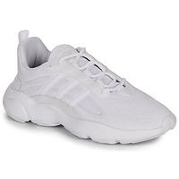 Παπούτσια Άνδρας Χαμηλά Sneakers adidas Originals HAIWEE Άσπρο