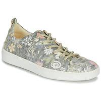 Παπούτσια Γυναίκα Χαμηλά Sneakers Think TURNA Grey