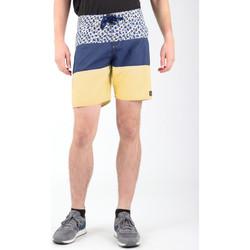 Υφασμάτινα Άνδρας Σόρτς / Βερμούδες DC Shoes DC SEDYBS03069-BYB0 Multicolor