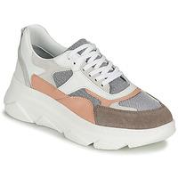 Παπούτσια Γυναίκα Χαμηλά Sneakers Sweet Lemon ALISHA Άσπρο / Grey / Nude
