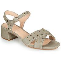 Παπούτσια Γυναίκα Σανδάλια / Πέδιλα Clarks SHEER35 STRAP Taupe / Clou