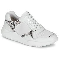 Παπούτσια Γυναίκα Χαμηλά Sneakers Clarks SIFT LACE Άσπρο / Phyton