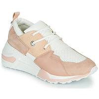 Παπούτσια Γυναίκα Χαμηλά Sneakers Steve Madden CLIFF Ροζ