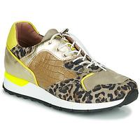 Παπούτσια Γυναίκα Χαμηλά Sneakers Mjus CAST Kaki / Leopard