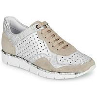 Παπούτσια Γυναίκα Χαμηλά Sneakers Regard JARD V4 CROSTA P STONE Άσπρο / Beige