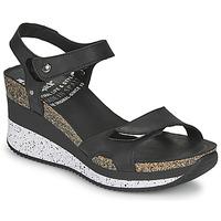 Παπούτσια Γυναίκα Σανδάλια / Πέδιλα Panama Jack NICA Black