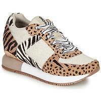 Παπούτσια Γυναίκα Χαμηλά Sneakers Gioseppo BIKANER Beige / Brown
