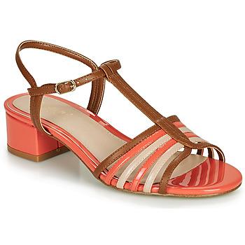 Παπούτσια Γυναίκα Σανδάλια / Πέδιλα André PARISETTE Πολύχρωμο