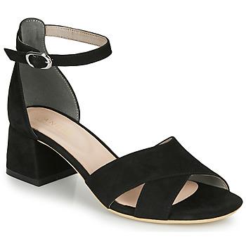 Παπούτσια Γυναίκα Σανδάλια / Πέδιλα André JAYLA Black