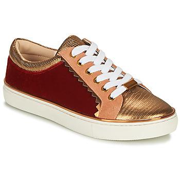 Παπούτσια Γυναίκα Χαμηλά Sneakers André LA FUNAMBULE Bronze