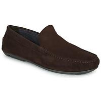 Παπούτσια Άνδρας Μοκασσίνια André BIOUTY Brown