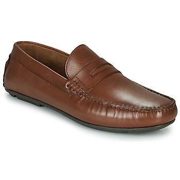 Παπούτσια Άνδρας Μοκασσίνια André SLOTI Cognac