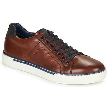 Παπούτσια Άνδρας Χαμηλά Sneakers André SHANN Brown