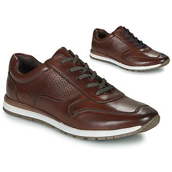 Παπούτσια Άνδρας Χαμηλά Sneakers André SPORTCHIC Brown