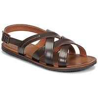 Παπούτσια Άνδρας Σανδάλια / Πέδιλα André SOLEIL Brown