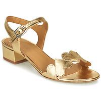 Παπούτσια Γυναίκα Σανδάλια / Πέδιλα Emma Go POPPY Gold