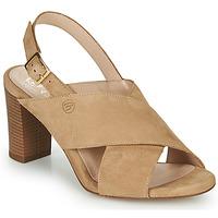 Παπούτσια Γυναίκα Σανδάλια / Πέδιλα Betty London MARIPOL Beige